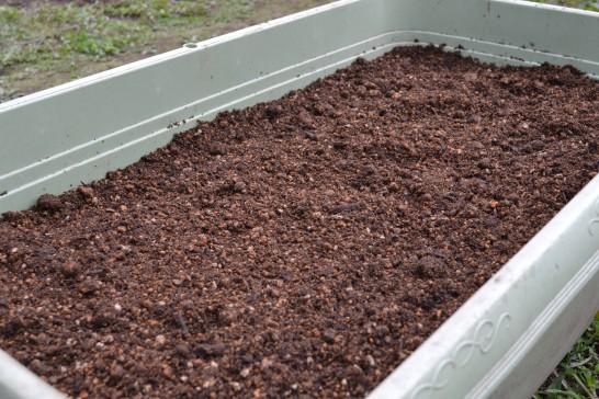 プランターに培養土を入れたよ