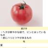 トマトのページ