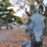 青森県十和田市の官庁街通りが印象的だったので写真を貼っていくよ