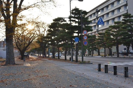 夕方の十和田市