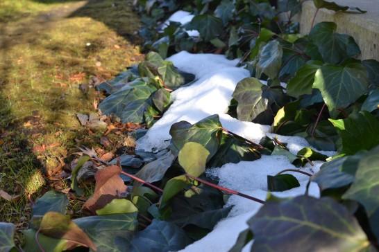 日陰に残る雪